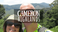 Cameron Highlands Featured Image