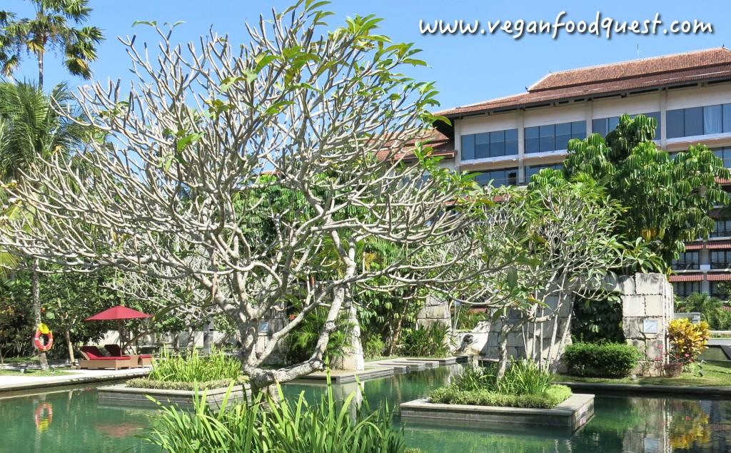 Sheraton Yogyakarta_1785