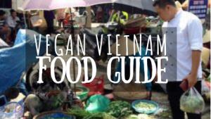 Vegan Vietnam Food Guide featured image