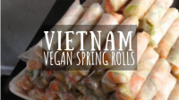 Vietnam Vegan Spring Rolls featured image