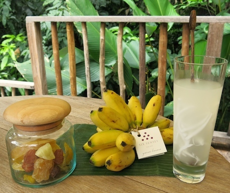 We loved the dried topical fruits, homegrown bananas and the delicious fresh coconut water that was waiting for us when we checked in.