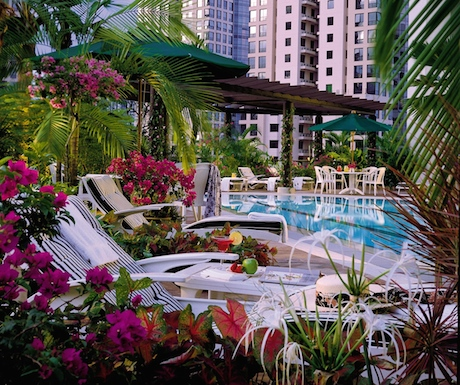 The pool offers an oasis of calm at Four Seasons Singapore.