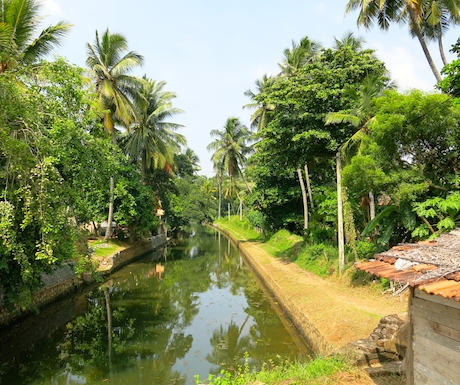 Peaceful canal in Negombo