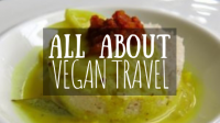 All about vegan travel featured image