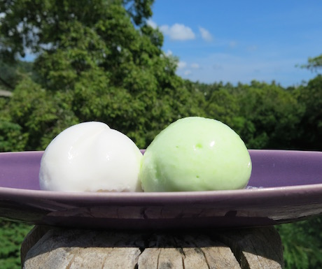 Green tea & coconut sorbet anyone?