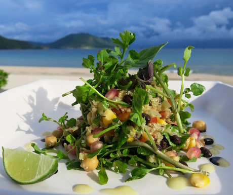 Amazing and delicious Quinoa Superfood Salad from the Healthy Menu at Six Senses Con Dao