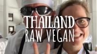 Thailand Raw Vegan featured image