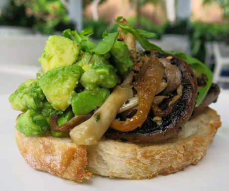 avocado and mushrooms on sour dough for breakfast at Thila