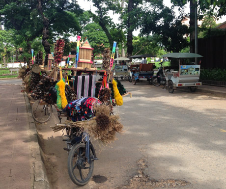 Siem Reap Vegan Villa - local street scene