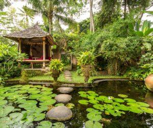 natural beauty everywhere at Bambu Indah