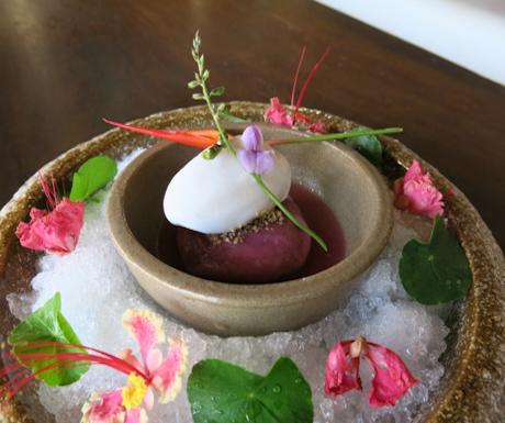 vegan dumplings with coconut sorbet