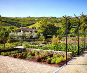 organic garden at Six Senses Douro Valley