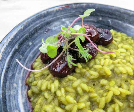 Chlorophyll and cherry from Resende Risotto at SIx Senses Douro Valley