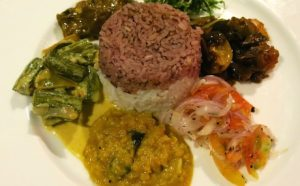 vegan rice and curry Sri LAnkan style at Jetwing Vil Uyana