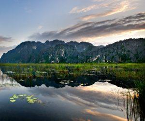 Van Long nature reserve in Vietnam