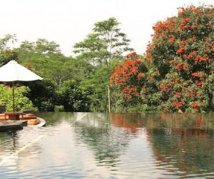 swimming pool at Mesa Stila in Java