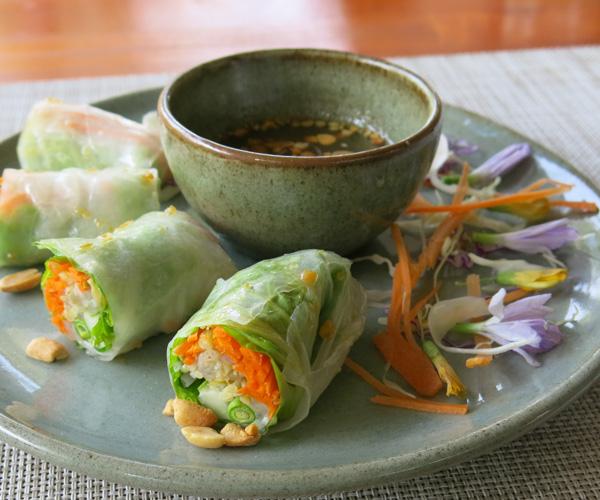 vegan fresh summer rolls at Templation