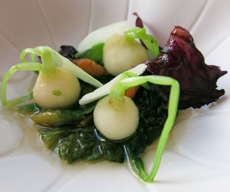 Seasonal miniature vegetables in a peppery broth