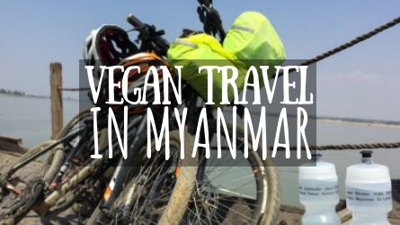 Vegan Travel in Myanmar featured image