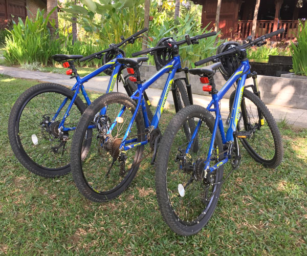 Mountain Bikes at Diamond Beach Villa