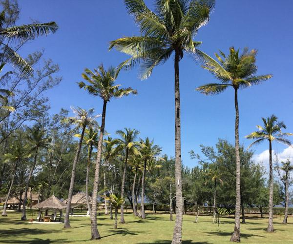 Stunning Grounds at Pondok Santi
