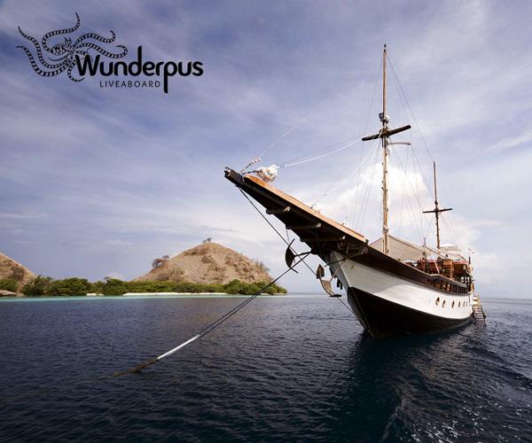 Wunderpus Liveaboard in Komodo