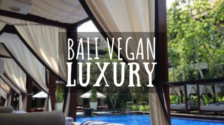 Bali Vegan Luxury Featured Image