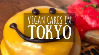 Vegan Cakes in Tokyo Featured Image
