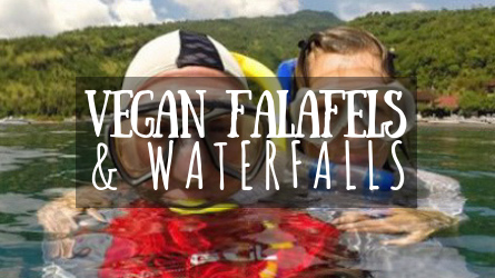 Vegan Falafels & Waterfalls Featured Image