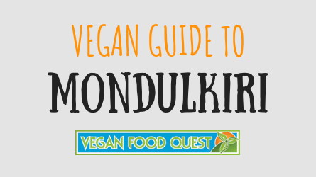 VEGAN GUIDE TO Mondulkiri featured image