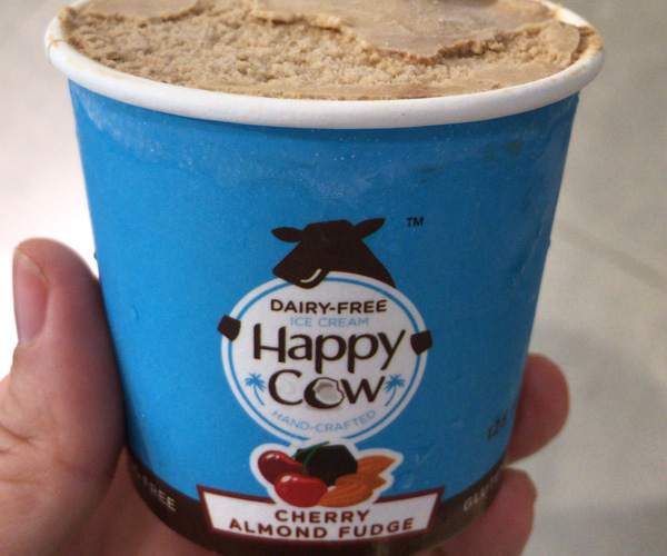 Happy Cow vegan ice cream 1