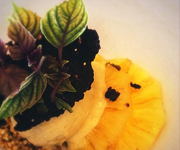 Soneva Fushi - Shades of Green Vegan Food 3