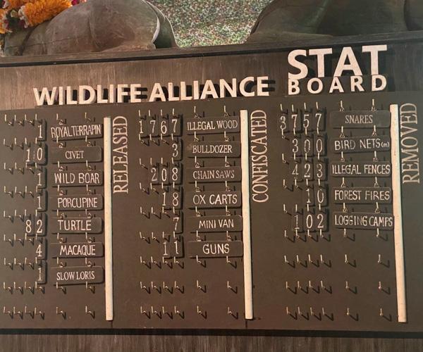 Wildlife Alliance Stats Board