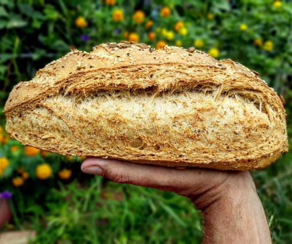 BreadHeadz vegan bread